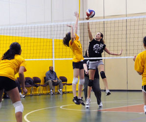 5 Best Ankle Brace for Volleyball Players